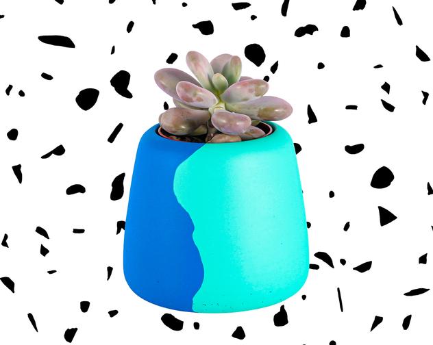 Hey Bulldog Design Large Blue Green Planter 1