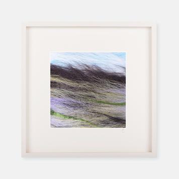 'Bogland' - Silk Print Collection
