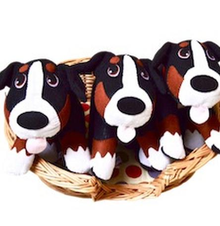 Bear Bernese Mountain Dog