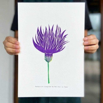 Meadow Thistle - Endangered Series