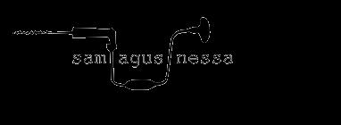 Sam Agus Nessa
