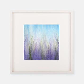 'Lavender' - Silk Print Collection
