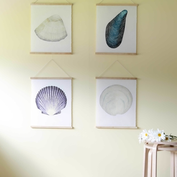 Sea Shell Print Bundle