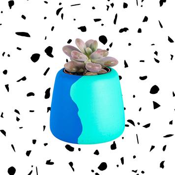 Large Blue/Green Colour Clash Planter