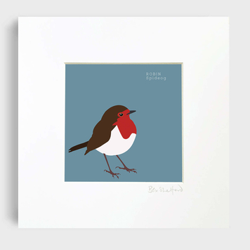 Robin - Spideog Art Print