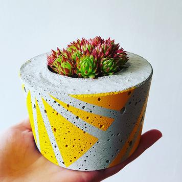Small Concrete Succulent Planter
